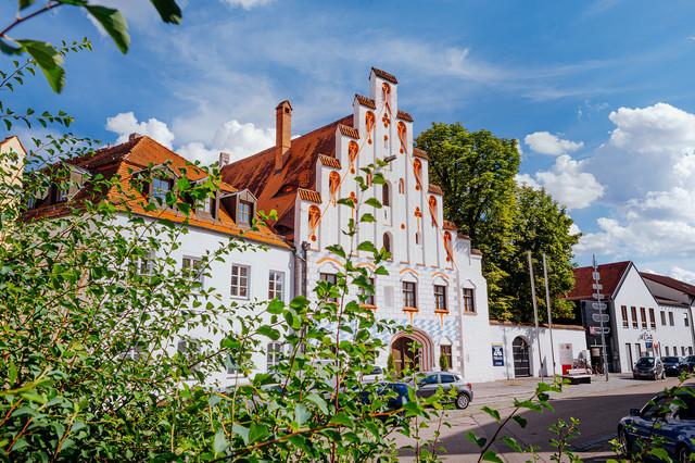 Stadt Dingolfing, Herzogsburg