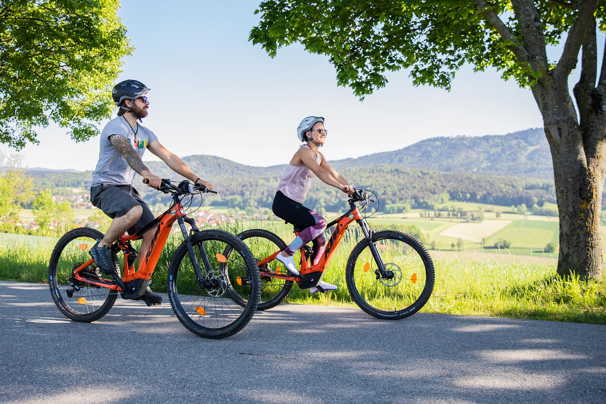 Dank dem E-Bike-Verleih sind auch lange oder anspruchsvolle Radtouren im Bayerischen Wald ohne Probleme zu bewältigen.