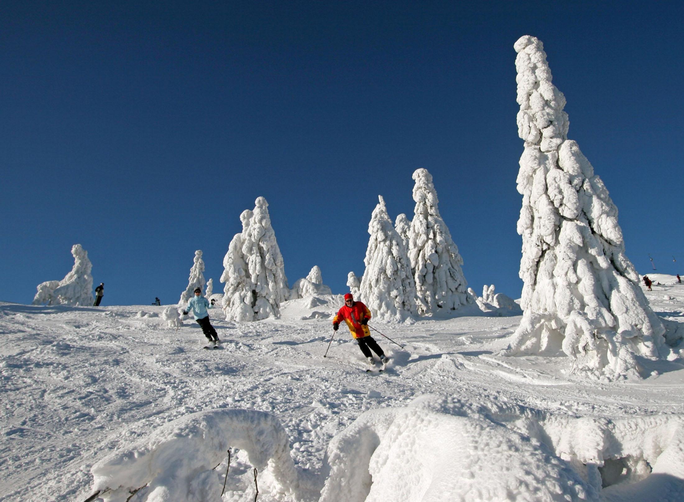 An Eldorado for skiers is the Great Arber - Skivergnügen am Großen Arber