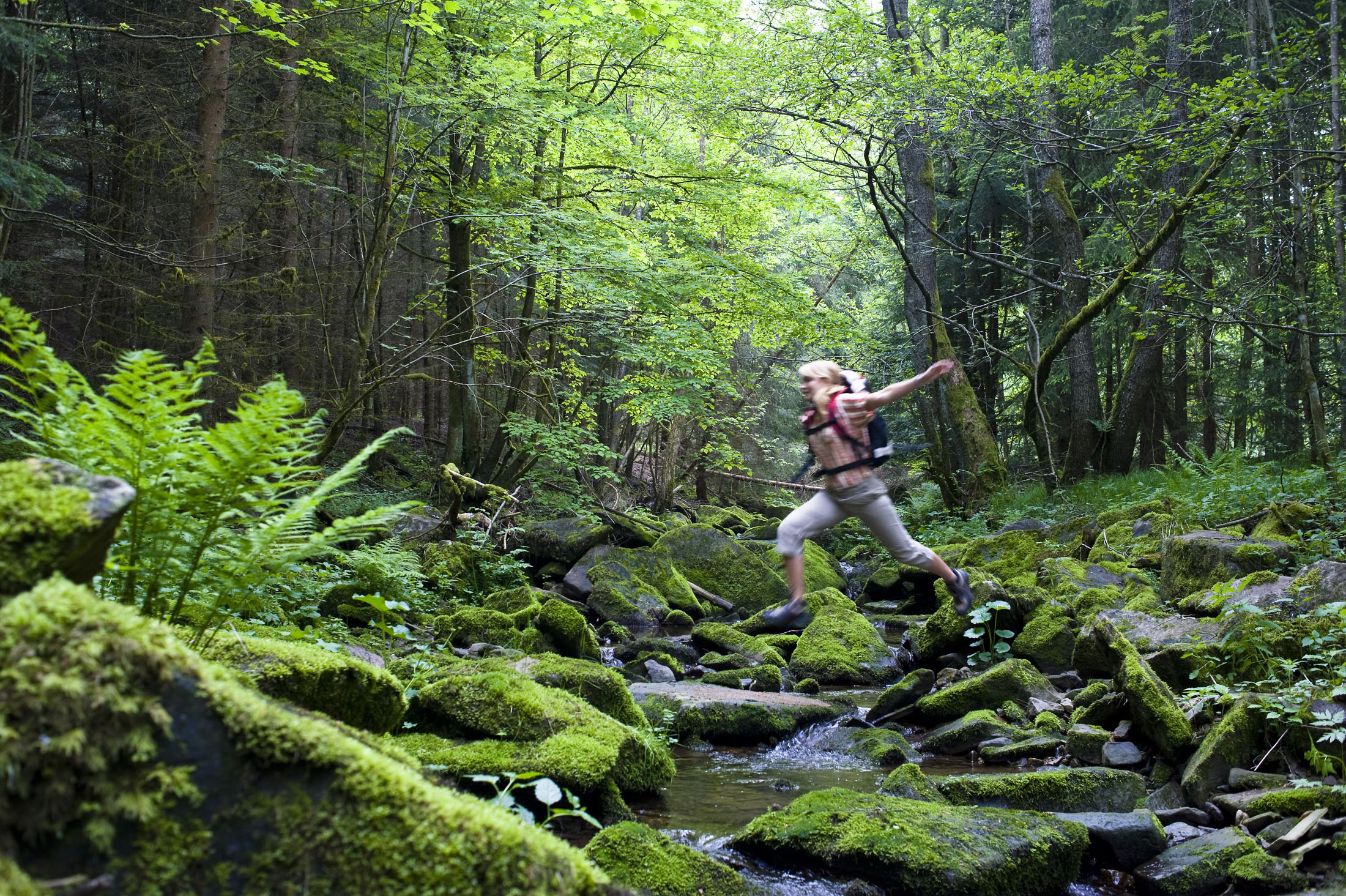 Experience the pure nature of the Bavarian Forest.