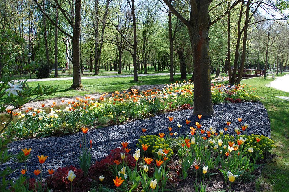 Frühlinghafte Stimmung im Kurpark Abbach