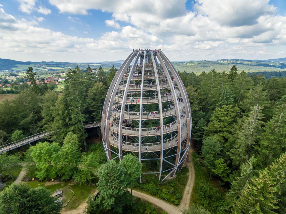 Der einzigartige Baumturm ist um drei Bäume errichtet und der Höhepunkt des Baumwipfelpfades