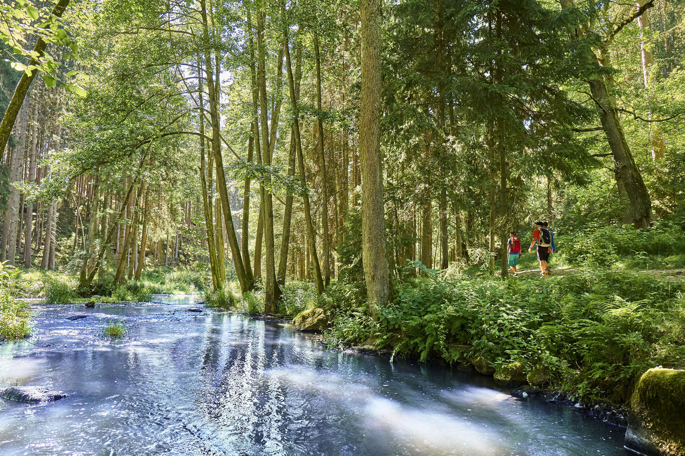 The longest certified hiking trail in Germany, the 600-kilometre-long Goldsteig trail crosses the Upper Palatinate Forest as well as the Bavarian Forest.