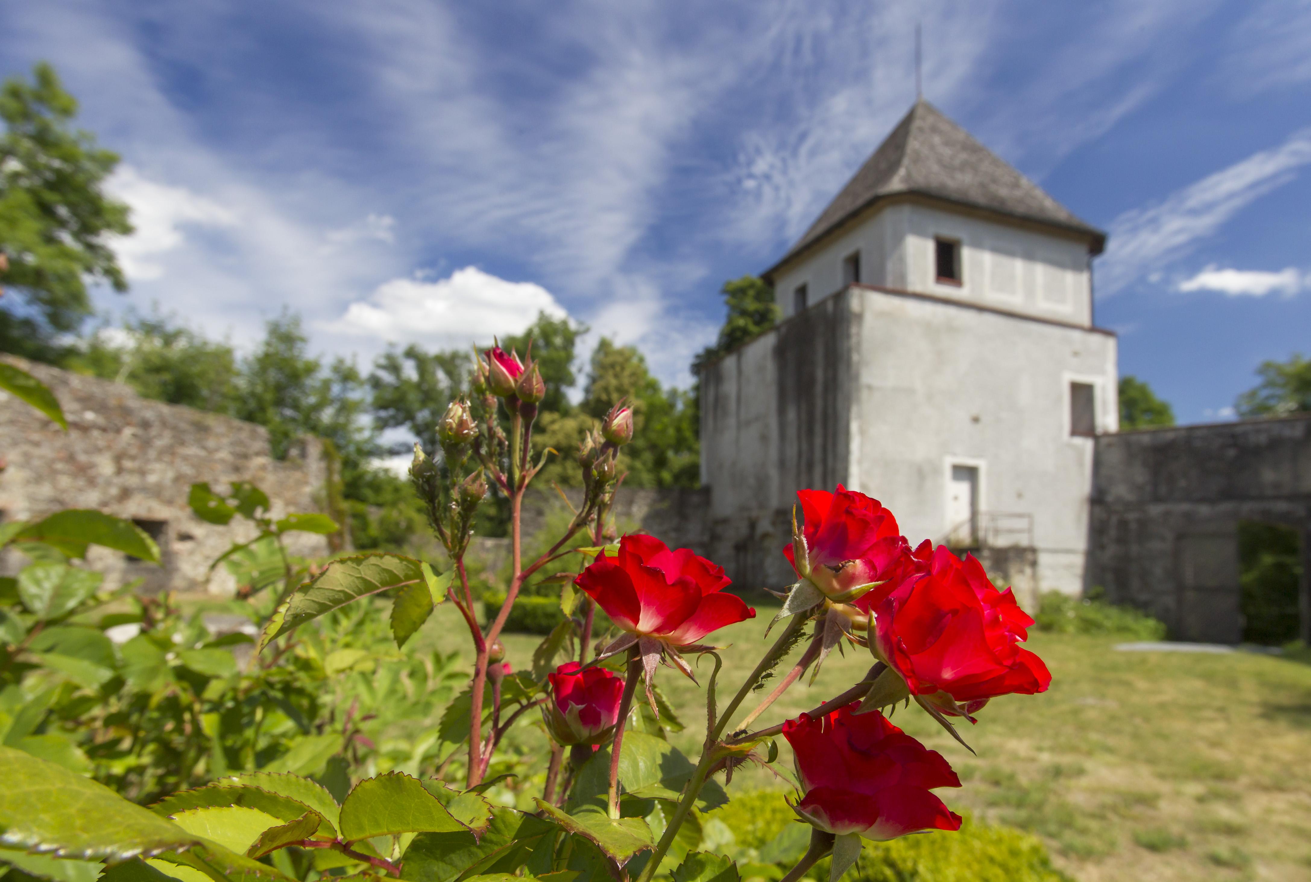 Die Burg Natternberg war einst Residenz des niederbayerischen Herzogs Heinrich XV.
