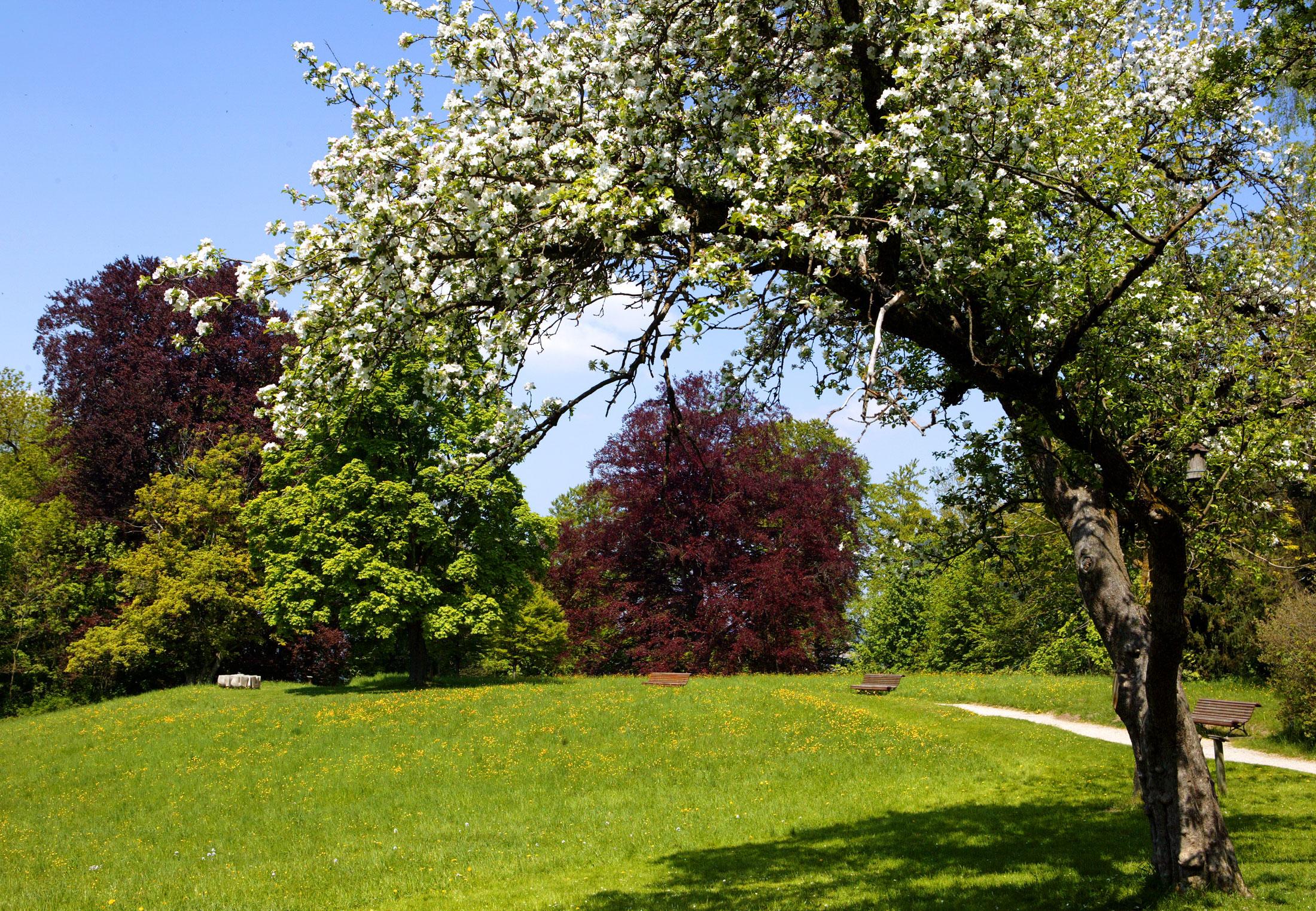 Der 27 Hektar große Hofgarten bietet einen sagenhaften Ausblick über die Stadt und verzaubert mit altem Baumbestand, farbenprächtigen Blumenanlagen, Kräutergarten, sowie mehreren Tiergehegen.